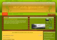 IBSI-US.COM Affordable Custom Web site design Tampa Florida