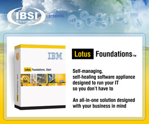 Lotus Notes support and maintenance